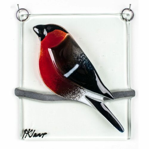 Bullfinch, relief