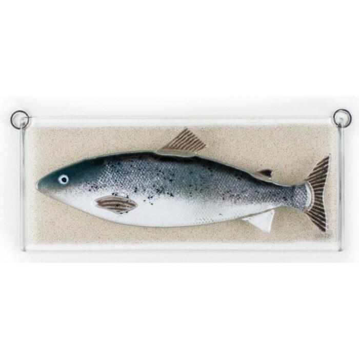 Salmon, relief
